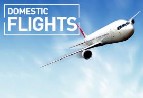 domestic-flight-500x500